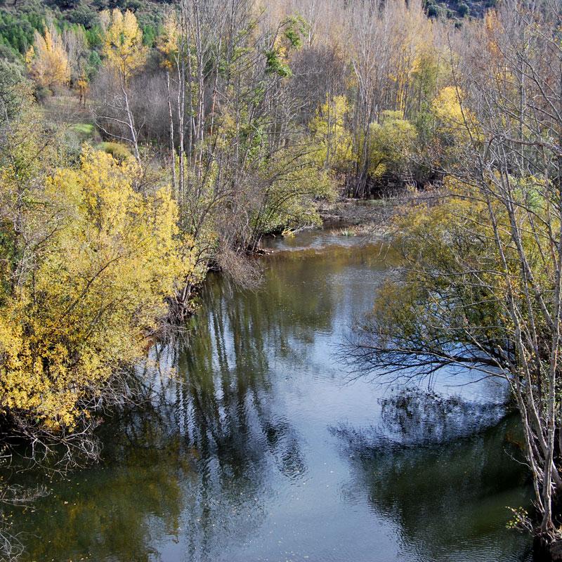 Río Sorbe